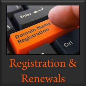 Domain Name Registration and Renewals